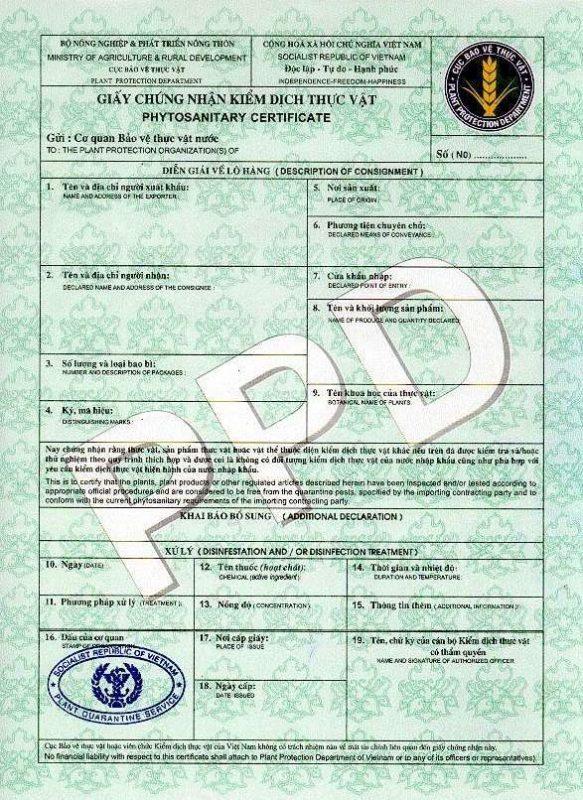 hàng hóa phải xin giấy phép xuất khẩu