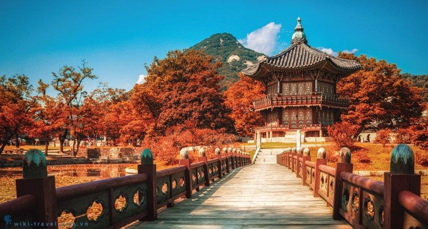 Chuyển phát nhanh đi Hàn Quốc